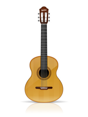 Acoustic guitar vector illustration isolated on white