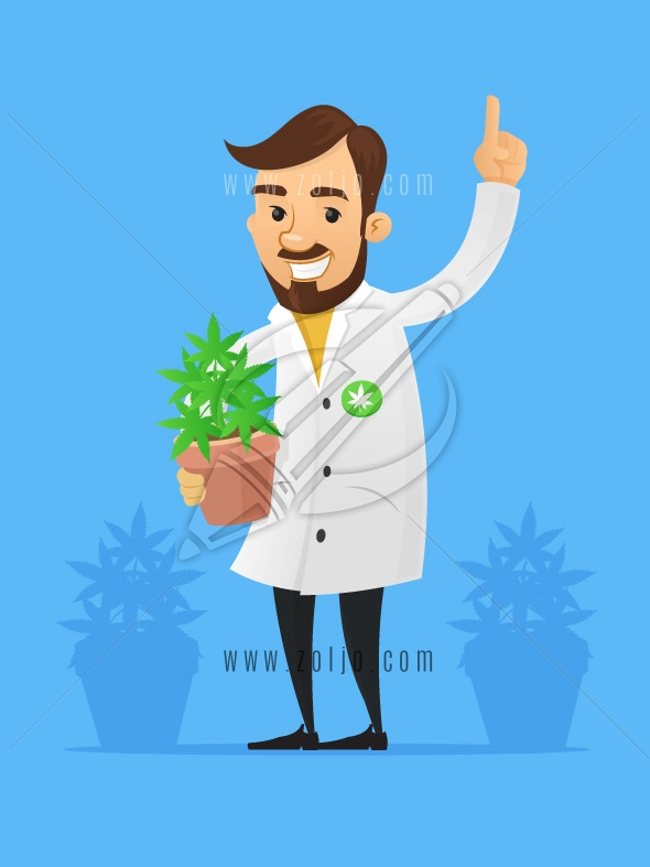 Happy doctor/scientist holding pot with marijuana/cannabis plant vector cartoon illustration